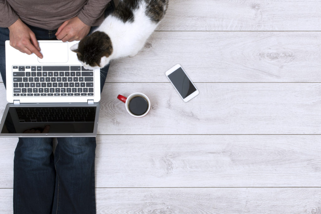 Top view image of woman using her laptop at home while sitting on the floor drinking her coffee. Her cat and smartphone beside her. Responsive design mockup.